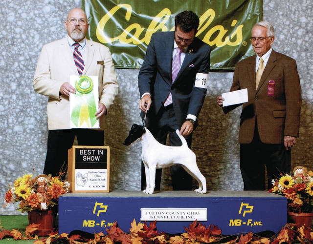 Pictured during the Best of Show presentation at a past Fulton County Kennel Club Dog Show are, from left, Judge Jim Funkhauser, handler Phil Booth, and Kennel Club President Bill Saloff.