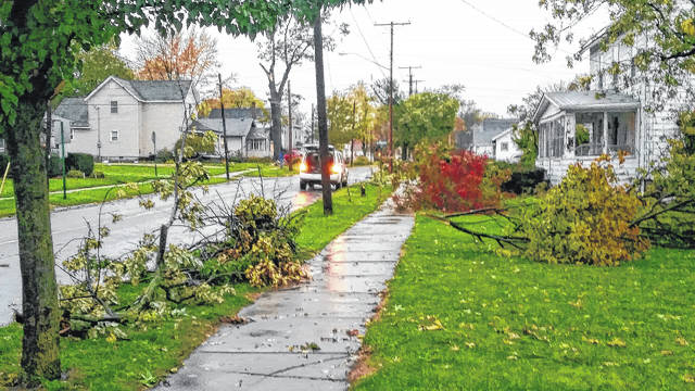 Many tree limbs and branches were down around Wauseon.
