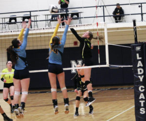 Pettisville hopes to defend Buckeye Border Conference crown